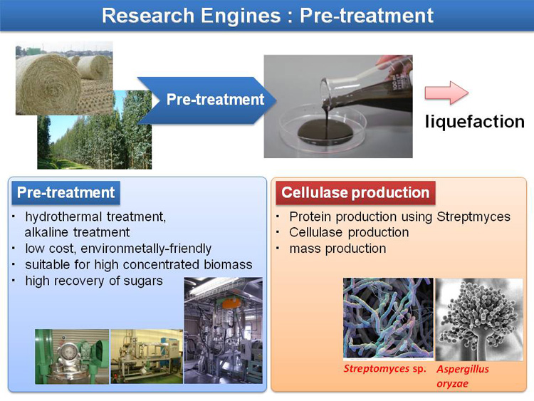 research paper cellulase production Cellulase: types and action, mechanism  this book presents research in the study of cellulase,  solid-state fermentaion for production of microbial cellulase:.
